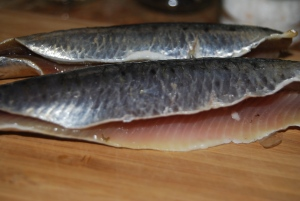 Fresh sardine fillets